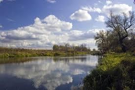 Моніторинг води поверхневих водойм